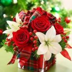 Composizioni floreali natalizie Roma - Composizioni floreali Natalizie Nettuno Anzio