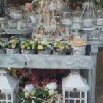 Vendita Fiori e Piante Nettuno Anzio Roma