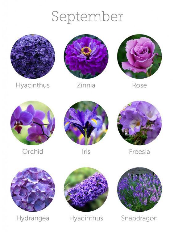 fiori-settembre-ottobre
