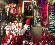 Vetrina natalizia fiori: Fiori Natale 2017